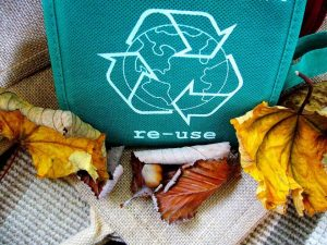 Packaging ecológico de cartón reciclado